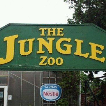 The Jungle Zoo